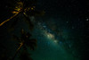 Come along the night (faisolreload) Tags: longexposure mars tree nature night canon stars space galaxy astrophotography indah coconuts bintang nightscapes kelantan milkyway 6d cantik 24105mm
