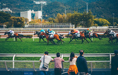 (Jacz Tse) Tags: life travel people horse hk man male green animal sport canon fun hongkong eos 50mm back spring afternoon lifestyle snap 50mm14 riding passion horseracing speedy powerful racecourse racehorse shatin horsepower gallop jh ourdoor hkjc 852 inmylife backsight shatinracecourse 5dmarkii horsephotograph withhen hkjockyclubshatinracecourse