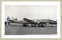 Lockheed L-1049G Super Constellation (Raymondx1) Tags: vintage classic black white blackwhite sw photo foto photography airtravel aviation lockheed constellation connie superconstellation superconnie 1950s fifties gatwick airport capitolairways capitol n4903c l1049g