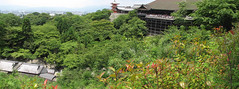 Kyoto-16.085 (davidmagier) Tags: trees panorama mountains japan architecture kyoto scenic temples jap historicsite