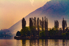 Dal Lake,Srinagar,Kashmir,India. (Rambonp love's all creatures of Universe.) Tags: park flowers blue trees red wallpaper sky india white snow mountains green tourism nature silhouette yellow clouds canon landscape paradise day tulips hills kashmir srinagar jk hillstation dallake touristplace