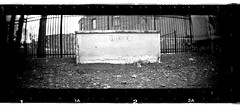 Go Home (New Paltz Camera Company) Tags: street new york white ny black art film monochrome sign analog train 35mm river lens graffiti kodak scanner trix tracks bob d76 plastic developer valley 400 epson rocket hudson analogue v600 expired beacon esposito sprocket