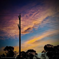 Electric Sunset (No. 1) (aus.photo) Tags: trees sunset sky silhouette clouds afternoon australia pole powerlines wires electricity canberra powerpole act cbr electricitylines australiancapitalterritory coolemanridgenaturereserve coolemanridge actew ausphoto