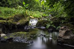 Lynn Glen (Rossco156433) Tags: longexposure nature water beautiful river landscape outdoors scotland waterfall glen burn filter nd dalry ayrshire lynnglen northayrshire neutraldensity