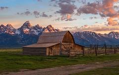T. A. Moulton Barn Sunrise (Cole Chase Photography) Tags: sunrise canon wyoming tetons grandtetonnationalpark thomasalmamoultonbarn eos5dmarkiii tamoultonbarn