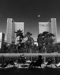 (lili_kanio) Tags: city paris france architecture bnf bibliothque iledefrance bnw
