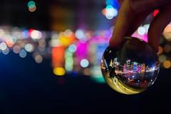 This glass ball is so fun to play with (alexnettleton93) Tags: city night canon nikon flickr colours upsidedown sydney vivid australia colourful operahouse amateur harbourbridge crystalball glassball 2016