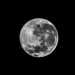 The Strawberry Moon On The Southern Hemisphere Winter Solstice - Barton - ACT - 20160621 @ 05:32 (MomentsForZen) Tags: zeiss superachromat250mmf56cf superachromat southernhemisphere wintersolstice strawberrymoon fullmoon moon dark night square exifeditor photoshopexpress photoshopfix bigphoto lightroom hasselblad500cmcfv50c hasselblad momentsforzen barton australiancapitalterritory australia astrophotography