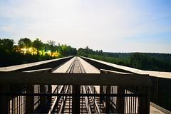 Kinzua Bridge (RWDrurey) Tags: longexposure bridge night lowlight nikon long nightscape pennsylvania vivid dslr kinzua nikond5300