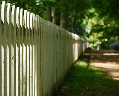 Along the garden path (Sun Dogs & Daylilies) Tags: fencefriday fencedfriday happyfencefriday hff picketfence gardenpath bellemeadeplantation nashvilletn panasoniclumixdmcg5g5425mmprimepanasonic leica dg nocticronnocticronmicro four thirds mft