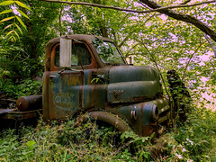 Rusty Old Dodge COE Flatbed Truck (J Wells S) Tags: ohio abandoned junk rust rusty batavia crusty vintagetruck flatbedtruck caboverengine dodgecoe tomrohrich bullnosedodge mikestowingrecovery