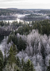 aulanko-1218 (ville.alapiha1) Tags: trees winter lake cold ice nature forest landscape outdoors frozen cool frost december january nobody chilly maisema aulanko reflectioninice