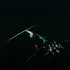 000024 (.Kaisu.) Tags: asahipentaxspotmatic spotmatic spii pentax estonia fuji fujipro400h vintageanalogue analogue filmphotography 35mm m42