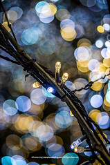 Winter Decorates |  (francisling) Tags: blue decorations light yellow japan festive season 50mm tokyo airport aperture bokeh sony   f18  haneda      5n nex5