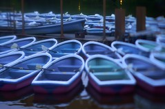 boats (turntable00000) Tags: park japan tokyo evening boat sony pong  inokashira  nex    turntable00000