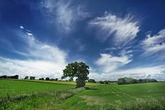 Lyng Norfolk (robertjamesstarling) Tags: summer sky robert rain june clouds wind norfolk starling lyng