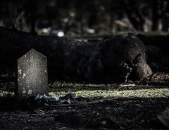 "200 unvaccinated children were buried here • <a style=""font-size:0.8em;"" href=""http://www.flickr.com/photos/44919156@N00/9122734175/"" target=""_blank"">View on Flickr</a>"