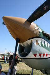 """P-40 Warhawk (7) • <a style=""""font-size:0.8em;"""" href=""""http://www.flickr.com/photos/81723459@N04/9276709429/"""" target=""""_blank"""">View on Flickr</a>"""