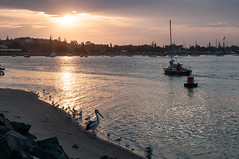 In the Port (MrBlackSun +5 Million Views, thank youMillion) Tags: sunset oz australia nsw newsouthwales aussie macquarie portmacquarie australie