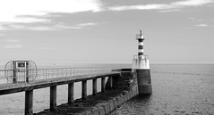 AMBLE, NORTHUMBERLAND (Roger Perriss) Tags: light sea seaweed concrete northumberland beacon breakwater amble harbourarm