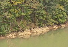 Shore of Cherokee Lake in Tn flicker (AliquippaGirl) Tags: blue red summer mountain lake plant mountains reflection tree beach nature water rock stone rural forest season landscape outdoors coast quiet view natural outdoor country great scenic rocky vivid scene surface shore
