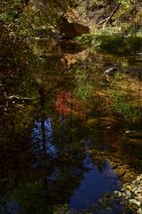 Tranquility (M.Chiat) Tags: reflections sedona autumnleaves fallinsedona