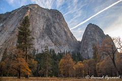Cathedral Rocks - IMG_6594 (arvind agrawal) Tags: yosemite yosemitenationalpark cathedralrocks
