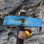 "Turtuga Trail <a style=""margin-left:10px; font-size:0.8em;"" href=""http://www.flickr.com/photos/94191857@N07/11874440395/"" target=""_blank"">@flickr</a>"