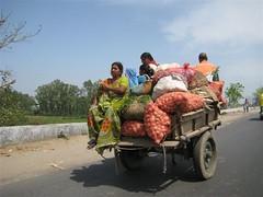 Mughal_Horse_cart