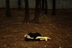(Anthonic.) Tags: park autumn crimson photography loneliness taiwan taipei   cinematic dahu