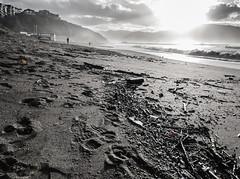 RESTOS (PIKAPLE) Tags: beach coast spain sigma olympus e3 1020 bizkaia getxo arigunaga