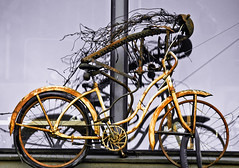 2nd Story Bicyclist 2 of 2 (Orbmiser) Tags: windows winter sculpture building art broken bicycle oregon portland skeleton nikon rusted hangin rider 2ndstory d90 55200vr {vision}:{outdoor}=0976
