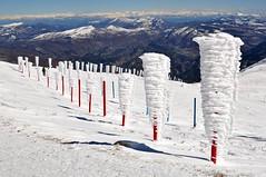 Mont Ventoux en Hiver 2014_ 063 (aups83) Tags: snow ski alps tree neige 84 vaucluse raynard montventoux bédoin montserein