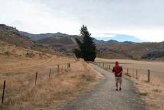 Eating and Walking (Jocey K) Tags: newzealand sky people tree clouds fence rocks scene hills nz southisland castlehill pathway rockformations kuratawhiticonservationarea limestoneboulders