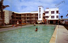 Horizon Apartment Hotel Ft Lauderdale FL (Edge and corner wear) Tags: party vintage hotel pc inn postcard motel spot x lodge marks swimmingpool chrome motor shelley