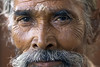 Portrait of a man, Delhi India (danythejack) Tags: old portrait eye face closeup portraits painting beard eyecontact faces serious painted indian blueeyes paintings beards headshot indians headshots closeups section bearded mimic seriously confidence wrinkled seriousness greyhair facialexpression truncated facialexpressions greyhaired closeupview lookingatcamera partsofbody partofbody horizontalformat confidently experienceoflife knowledgeoflife lookingtowardcamera fullofwrinkles darkskinneddelhiindiaindianwayoflifebeardmoustacheseri