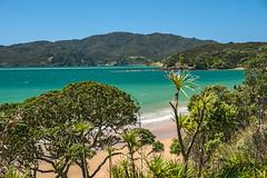 Beach (fotofrysk) Tags: newzealand beach water sand northisland northland coopersbeach 201411091454