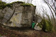 Enormes Blocs Tombs le long des Falaises du Bois du Vivier de Cussey Sur Lison (francky25) Tags: de long du des le sur franchecomt bois falaises blocs doubs lison enormes vivier tombs cussey