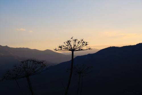 Ijevan  Mountains...  Tavush, Armenia.