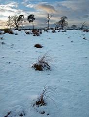 TAMFOURHILL SUNSET (kenny barker) Tags: snow falkirk tamfourhill