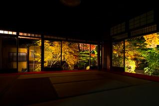 紅葉の天授庵 - 南禅寺 / Tenjyuan Nanzen-ji Temple