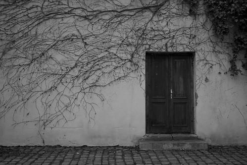 Winter ©  Still ePsiLoN