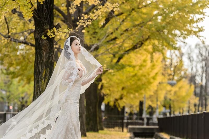 cheri wedding,cheri婚紗,cheri婚紗包套,日本婚紗,京都婚紗,京都楓葉婚紗,海外婚紗,神戶婚紗,新祕巴洛克,楓葉婚紗,MSC_0038