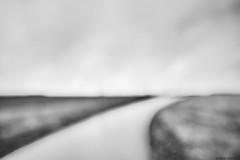 Landschaft bei Edenkoben 1 (rainerneumann831) Tags: blackwhite landschaft linien edenkoben unschrfe