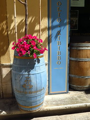 (LILI 296....) Tags: fleur rouge bleu rue trapani sicile ptunia tonneau croisiredefrance canonpowershotg16