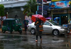 On a rainy day (Ferdousi.) Tags: umbrella rainyday streetphotography monsoon bangladesh chittagong