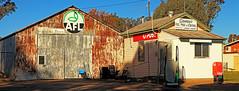 Stumpy's (Darren Schiller) Tags: building abandoned shop rural advertising store closed garage shed postoffice rusty newsouthwales fuel corrugatediron galvanisediron greenethorpe