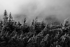 Fog, wind and snow in May (awbaganz) Tags: snow mountains fog fuji wind may czechrepublic krkonoe xt1 xf1024
