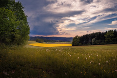 Spring Sunset (#mariodieth) Tags: flowers trees sunset sky flower canon landscape spring landschaft photgraphy 6d
