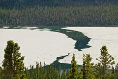Breakup (MIKOFOX  Catching Up!) Tags: lake canada ice water landscape spring may yukon spruce breakup xt1 bigfoxlake fujifilmxt1 xf18135mmf3556rlmoiswr screwtheautotagbot mikofox